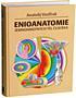 Enioanatomie jemnohmotných těl člověka